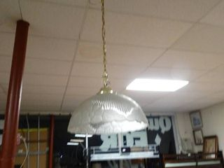Floral Glass Hanging light Fixture