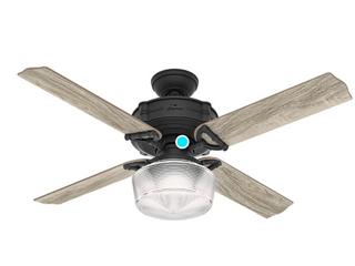 Hunter Fan 52  Brunswick Natural Iron Ceiling Fan