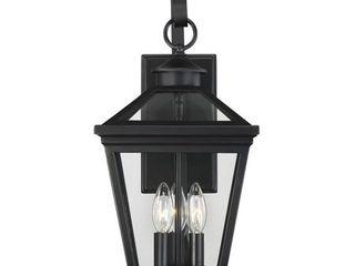Savoy House Ellijay 5 141 Outdoor Wall lantern