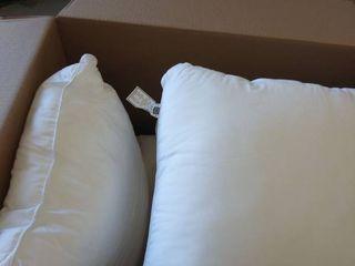 4 20 x20  pillows