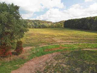 Absolute 63.3 Acres Near Atwood Lake