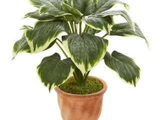 Nearly Natural 22 inch Variegated Hosta Artificial Plant in Terracotta Planter