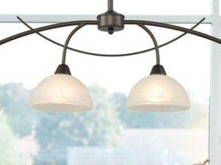DZ Ceiling light Fixture