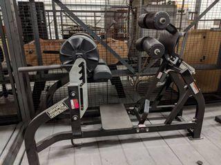 Hammer Strength Back Extension Machine