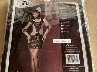 Hgm Roaring 20 s Flapper M Deluxe Women s Silver Sequin Charleston Costume