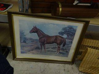 Vintage Quarter Horse Framed Picture