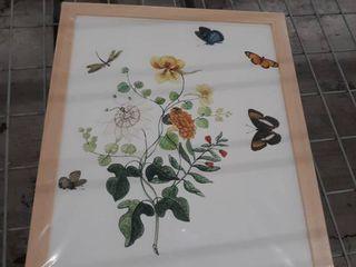 Noir Gallery Butterflies Floral Botanical Framed Art Print  Retail 192 49