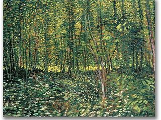 Vincent Van Gogh  Trees and Undergrowth  1887  Canvas Art   Multi  Retail 122 99