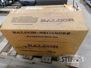 Baldor 1 jpg