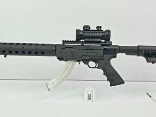 Ruger SR 22 Rifle