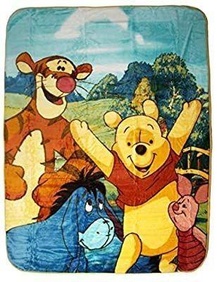 Disney Winnie the Pooh Hunny Dayz Tigger  Eeyore  Pigglet 60x80 Twin Mink Style Blanket