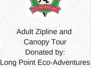 ADUlT ZIPlINE AND CANOPY TOUR AT lONGPOINT ECO