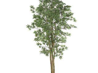 Japanese Maple 6 foot Silk Tree   Green Retail 153 49