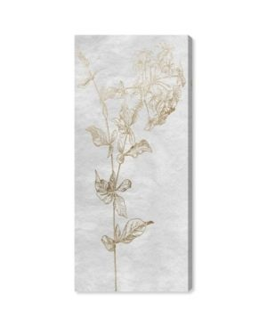 Oliver Gal  Floral Sketch Vertical Gold  Floral and Botanical Wall Art Canvas Print   Gold  White  Retail 125 99