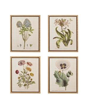 Martha Stewart Herbal Botany Set Framed linen Canvas 4 Pc Set