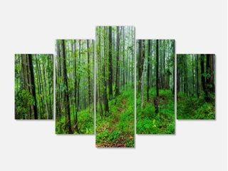 Green Wild Forest with Dense Trees   large Forest Wall Art Canvas  Retail 115 49