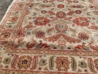47 in x 69 in Palazzo rug needs cleaned