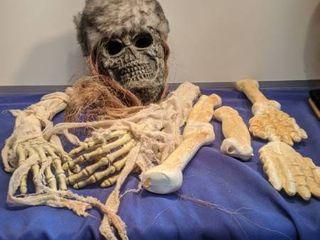 skeleton head and bones