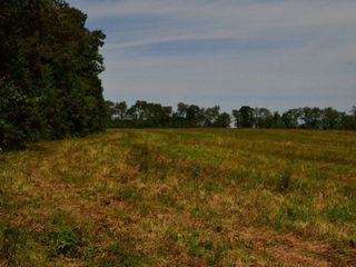 Approx. 97 Acres (Offered in 9 Tracts) of the Late Dora Verna Stafford Estate at Absolute Live Auction