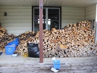 lARGE GROUP OF ASH FIREWOOD   APPROX  4 CORD