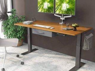 FEZIBO 48 x 24 Inch Electric Height Adjustable Desk  Metal  Bamboo