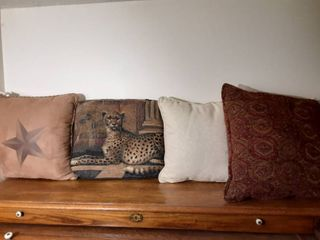 lot of 4 Decorative Pillows