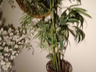 68 Inch Tall Faux Tree inside Wooden Planter