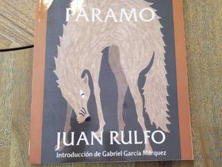 Pedro PAramo  Spanish Edition