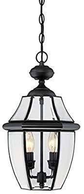 Portfolio Brayden Mystic Black French Country cottage Beveled Glass Cage light