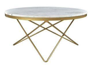 Aurelle Home White Heather Glam Marble Top and Iron Coffee Table  Retail 599