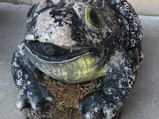 Black Concrete Frog Statue