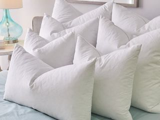 1221 Bedding Feather Pillow Inserts  Set of 2    White