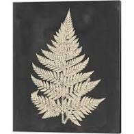 Vision Studio  linen Fern I  Canvas Art