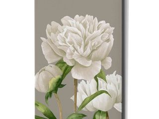 Epic Graffiti  White Peonies II  by Grace Popp Giclee Canvas Wall Art  12 x16  Retail 98 99