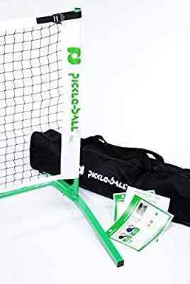 3 0 Portable Pickleball Net System  Set Includes Metal Frame and Net in Carry Bag    Durable and Easy to Assemble