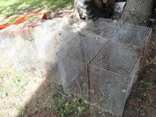QUANTITY OF CAGES   NO ENDS