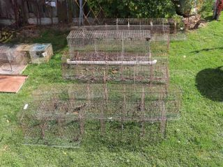 QUANTITY OF lAYING CAGES