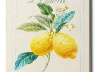Epic Graffiti  Floursack lemon III  by Danhui Nai  Giclee Canvas Wall Art  12 x16  Retail 75 98