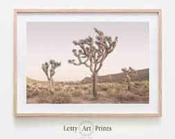 DESERT ARTWORK