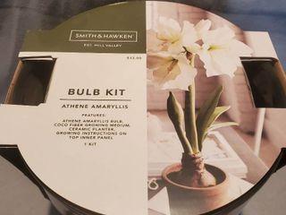 Smith and Hawken Athene Amaryllis Bulb Kit  in Black Vase NIB