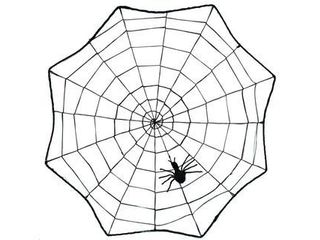 Scary Spider Web with Spider  Black  17 inches