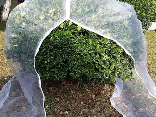 AgFabric Insect Barrier Netting