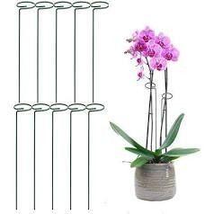 10  24  Single Stem Plant Support