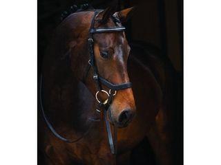 Micklem Competition Diamond Bridle Black Horse