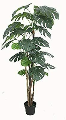 AMERIQUE Gorgeous   Unique 6 Feet Pre Potted Monstera Palm Split Philo Artificial Plant Silk Tree  Real Touch Technology  with UV Protection  Indoor   Outdoor  Super Quality  Green