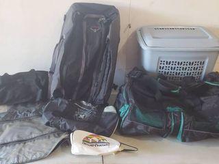 Gym Bags  Garment Bag  and Blue Hamper