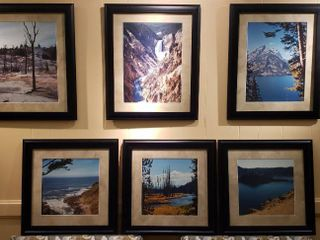 6 Framed Nature Photographs   3 Rectangular  19 x 23 in  and 3 Square  19 x 19 in