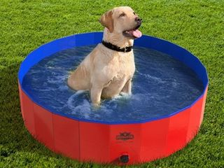 Pet Pool and Bathing Tub Foldable with Carrying Bag Included