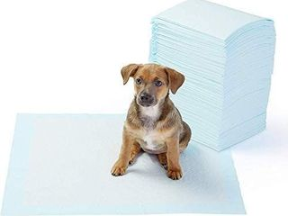 AmazonBasics Dog and Puppy Potty Training Pads  Regular  22 x 22 Inches    Pack of 50