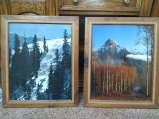 Vintage Framed Nature Photography Pictures